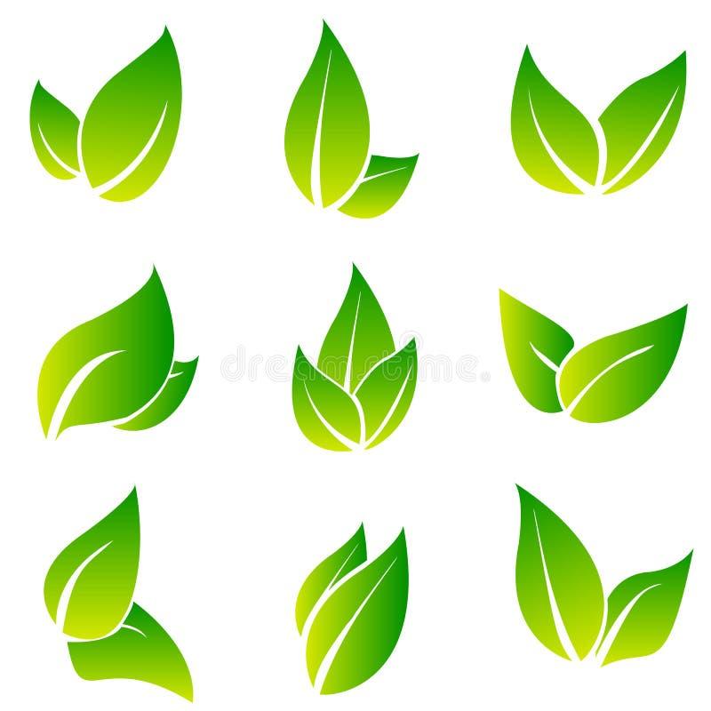 Uppsättning för sidasymbolsvektor som isoleras på vit bakgrund Olika former av gröna sidor av träd och växter beståndsdelar för stock illustrationer