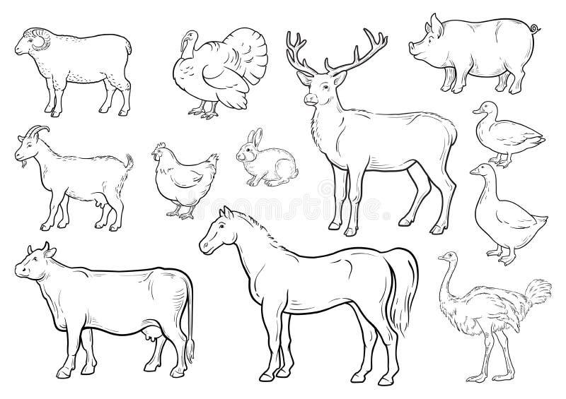 Uppsättning för symboler för lantgårddjur Samling av etiketter med härligt liksom kon Turkiet för häst för gås för and för galt f royaltyfri illustrationer