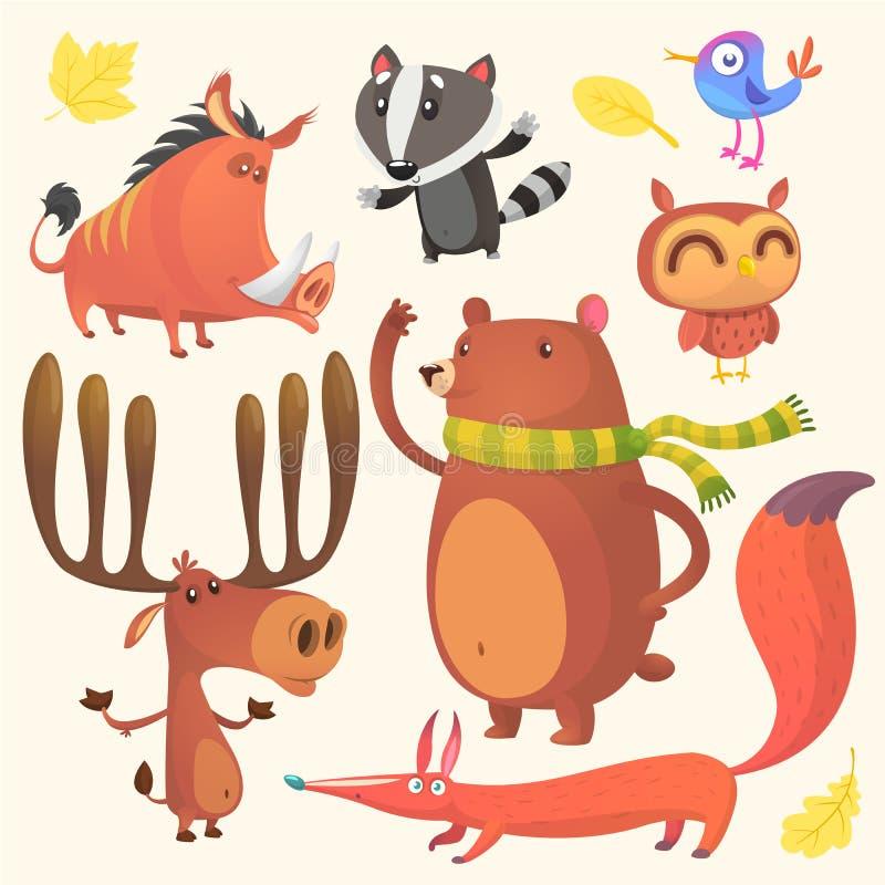 Uppsättning för tecknad filmskogsmarkdjur Vektorillustration av galten, bäverskinnet, den blåa fågeln, älgälgen, björnen, ugglan  stock illustrationer