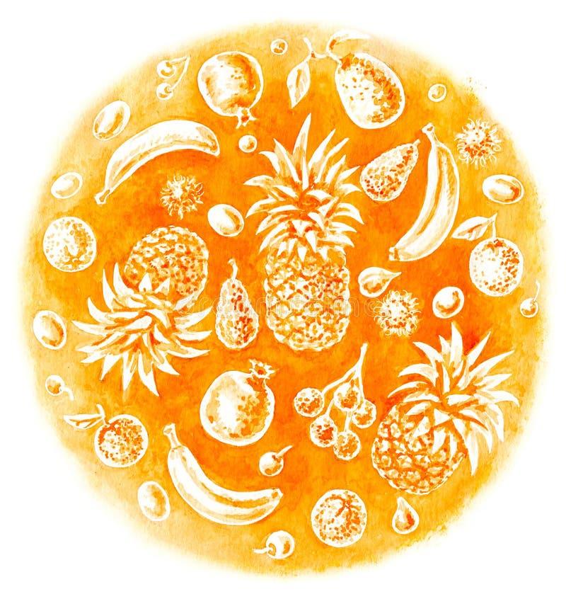 Uppsättning för tropisk frukt för vattenfärg vektor illustrationer
