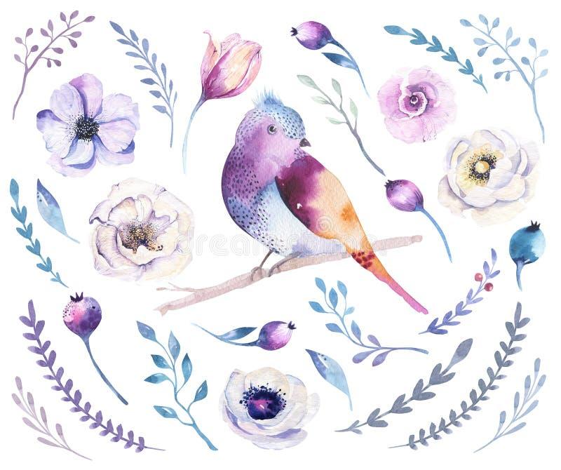Uppsättning för vattenfärgbohoblomma Vår- eller sommargarnering blom- b stock illustrationer
