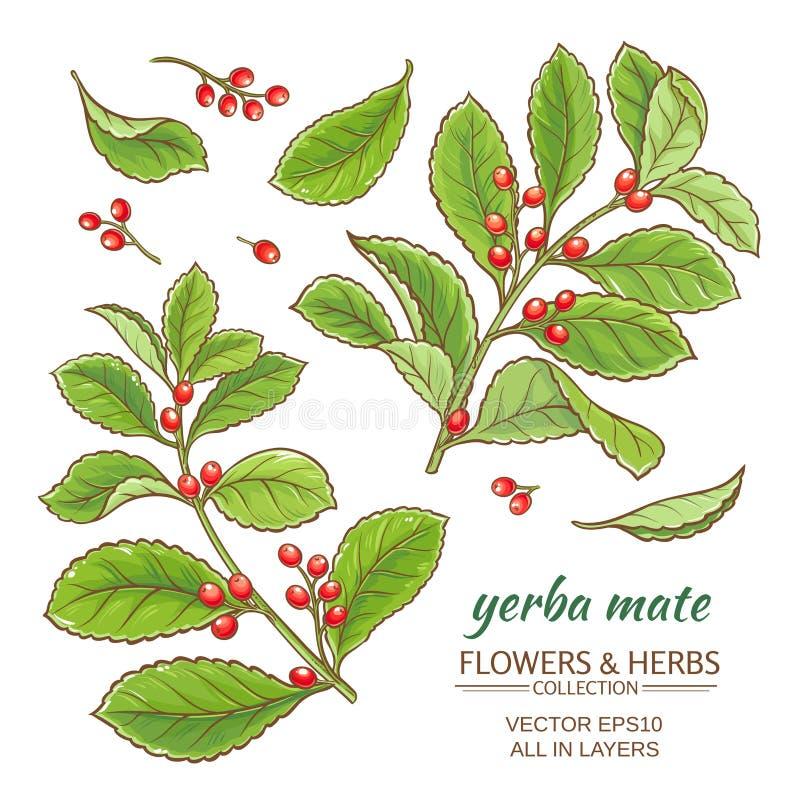 Download Uppsättning För Yerba Kompisvektor Vektor Illustrationer - Illustration av mate, rött: 76700909