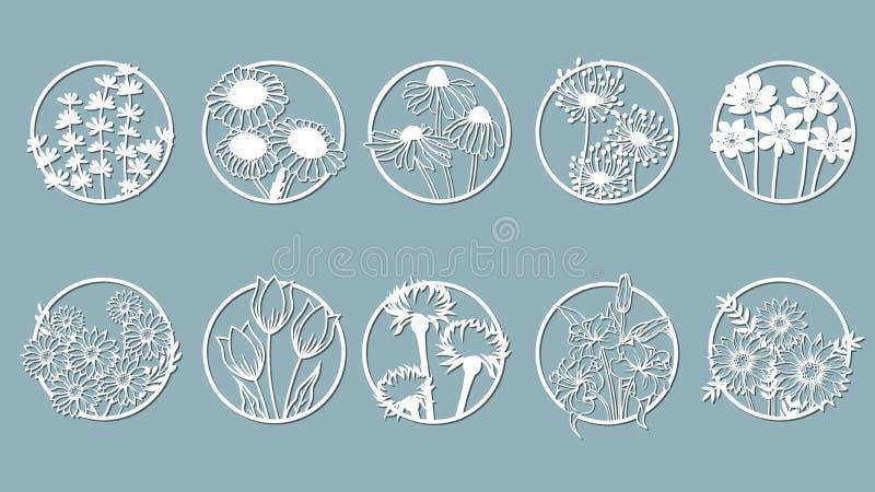Uppsättning Kamomill Echinacea, maskros, krysantemum, nobel blåsippa, stokesia, lilja, sidor, gräs Panel för registrering av vektor illustrationer