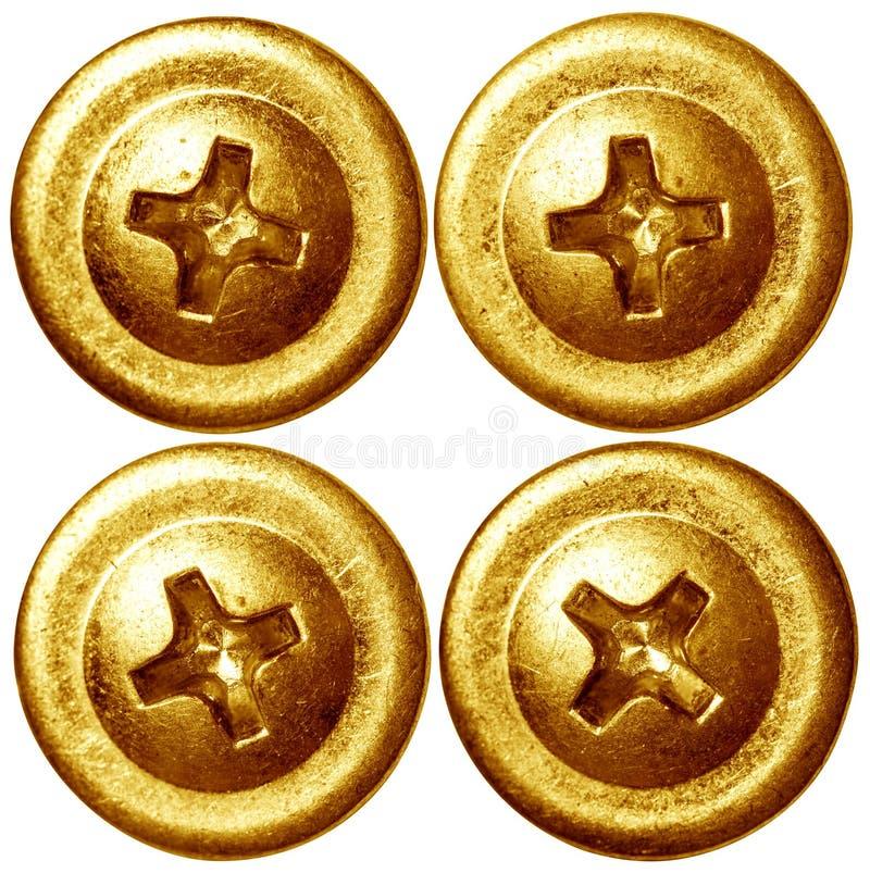Uppsättningen av den guld- skruven spikar huvud royaltyfria foton
