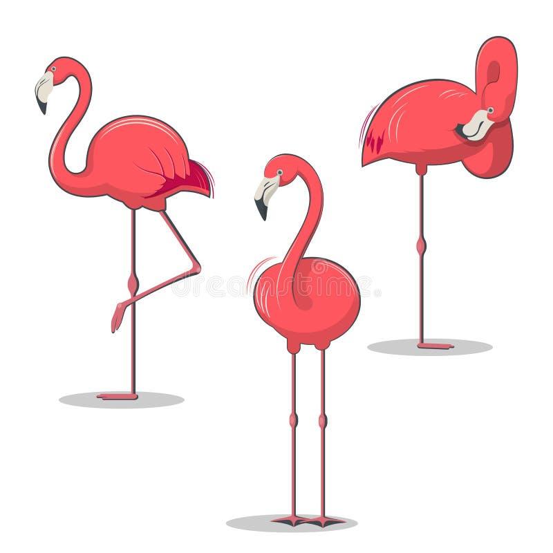 Uppsättningen av den rosa flamingofågeln i olikt poserar royaltyfri illustrationer
