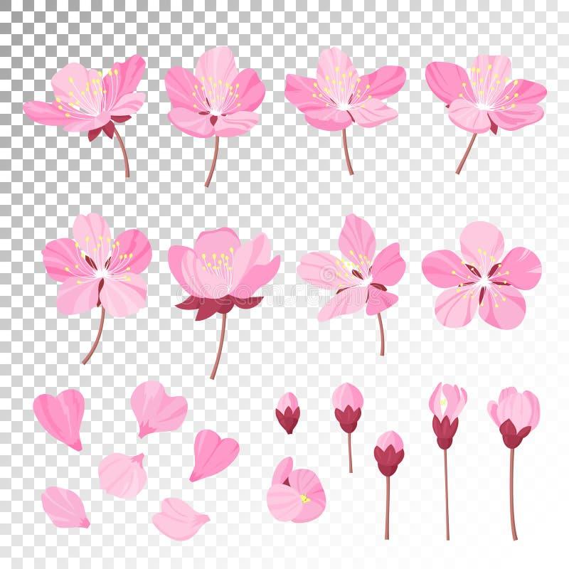 Uppsättningen av det härliga körsbärsröda trädet blommar på witebakgrund Samling av den rosa sakura eller äppleblomningen, japan royaltyfri illustrationer