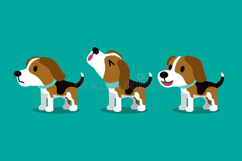 Uppsättningen av gulliga katter för tecknad filmtecken och anförandebubblor med accessoriesSet av hunden för beaglet för vektorte vektor illustrationer