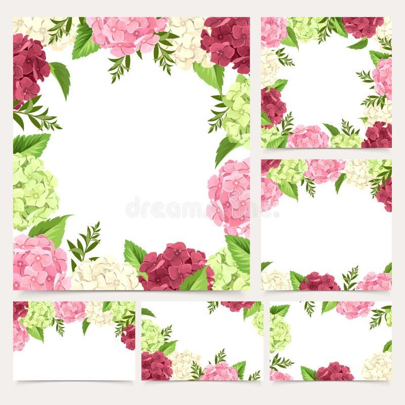Uppsättningen av hälsning- eller bröllopkort med vanliga hortensian blommar Vektor EPS-10 vektor illustrationer