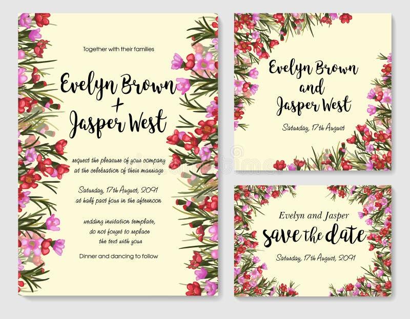 Uppsättningen av kortet withred och rosa waxflower, sidor black den guld- isolerade prydnaden för blomman över satängbröllop royaltyfri illustrationer