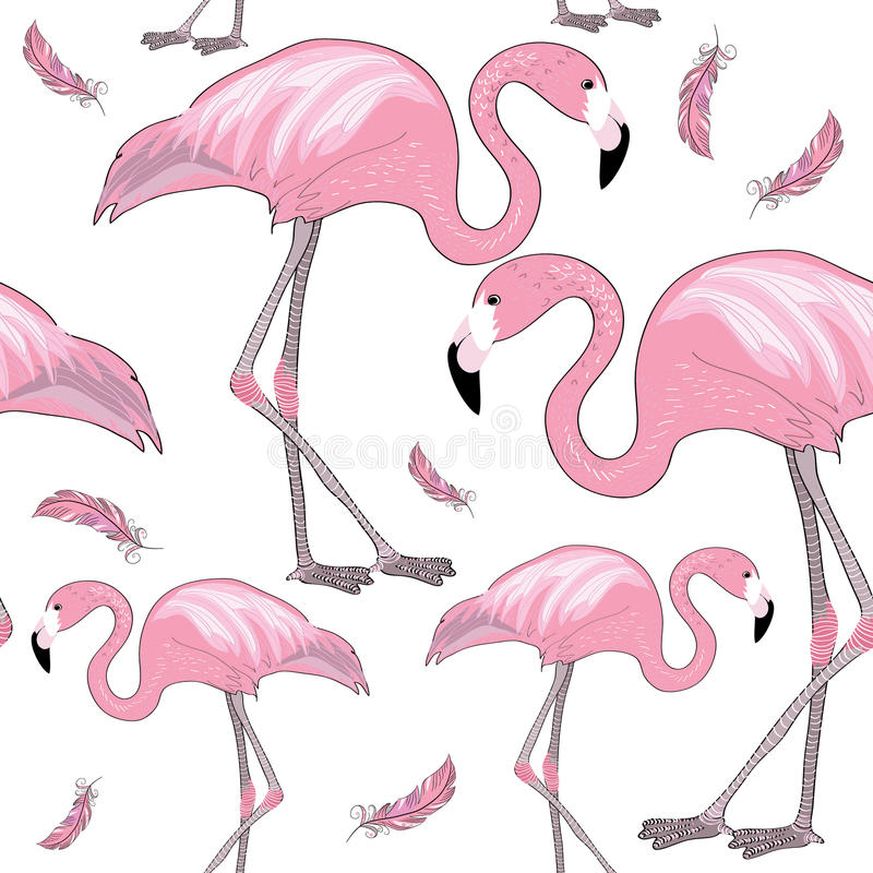 Uppsättningen av rosa flamingo med svarta näbb med rosa färger befjädrar runt om dem seamless modell white för vektor för bakgrun vektor illustrationer