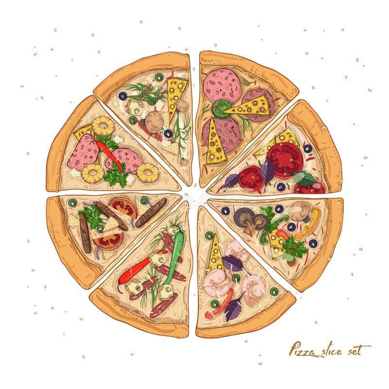 Uppsättningen av skivor av olik pizza skriver med olika ingredienser som isoleras på vit bakgrund - peperonin, hawaiibo stock illustrationer