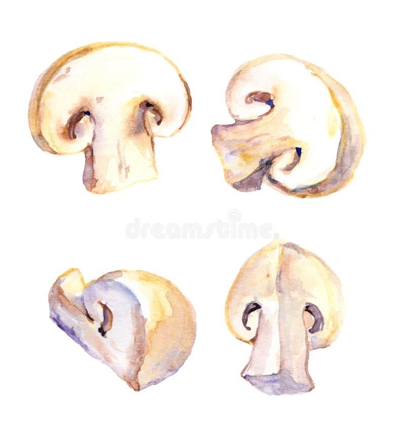 Uppsättningen av snittet plocka svamp champignonen stock illustrationer