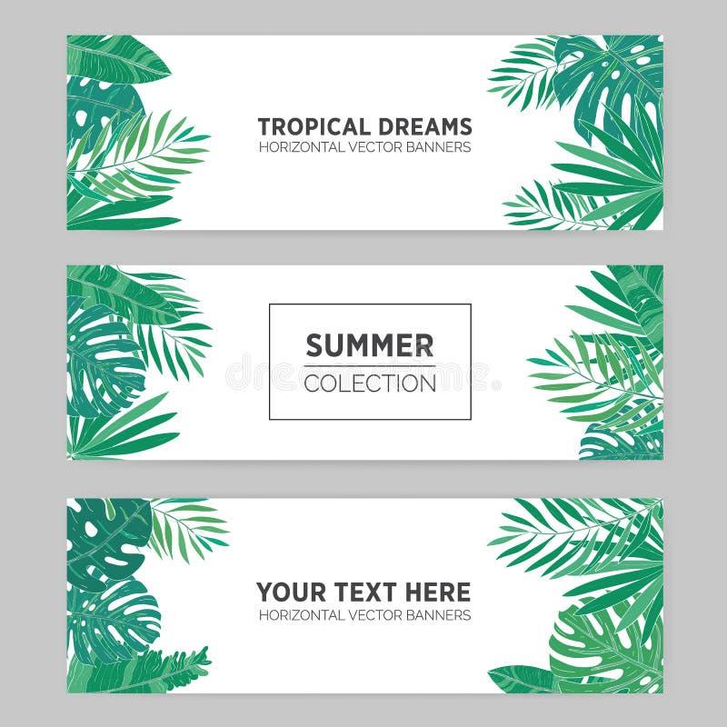 Uppsättningen av sommarhorisontalbaner med tropiska sidor, monstera, bananen, chamaedorea och annan gömma i handflatan Mall för stock illustrationer