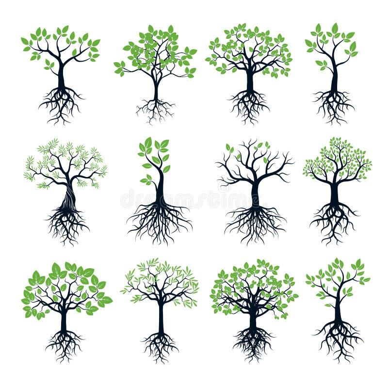 Uppsättningen av träd, gröna blad och rotar royaltyfri illustrationer