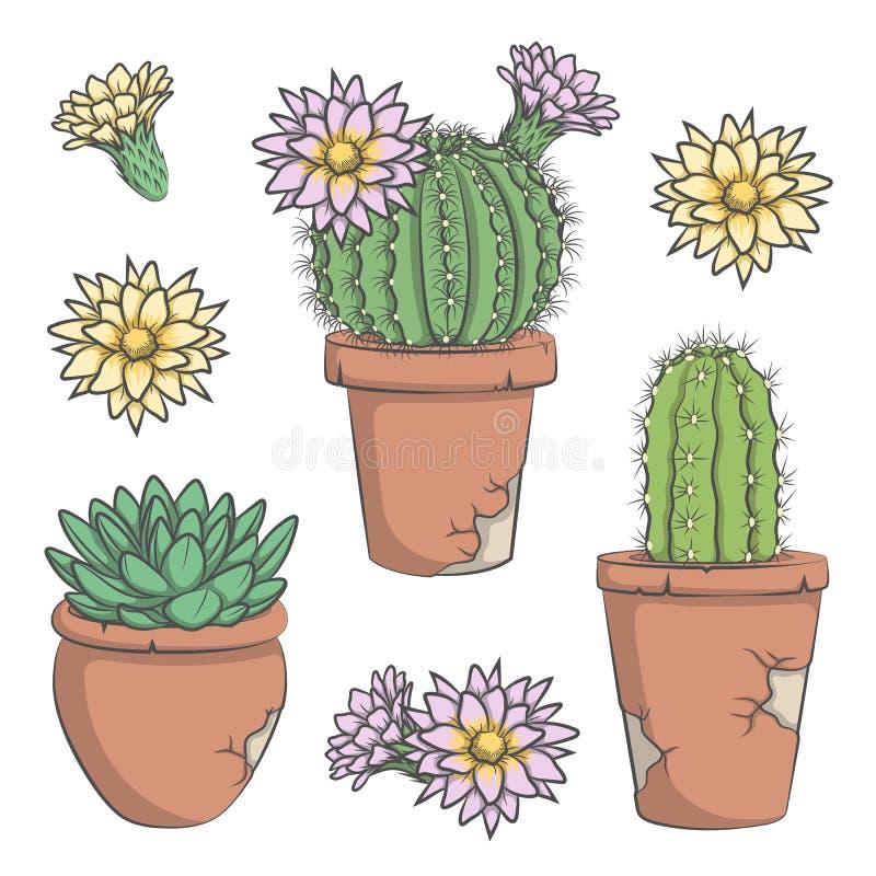 Uppsättningen av vektorn färgade kaktuns med blommor i gamla krukor royaltyfri illustrationer