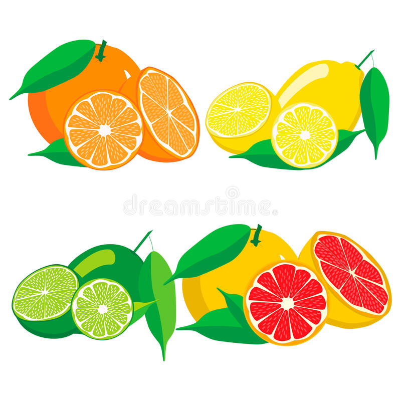 Download Uppsättningen Bär Frukt Orange Grapefruktcitronlimefrukt Vektor Illustrationer - Illustration av exotiskt, citron: 78725050