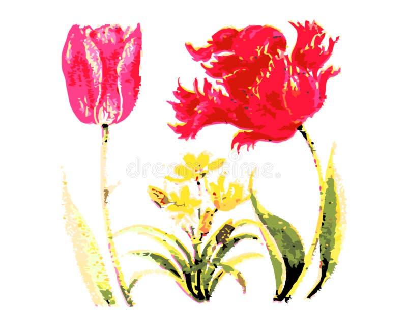 Upps?ttning av de blom- ordningarna F?rgrika blommor med gr?na sidor r royaltyfria foton