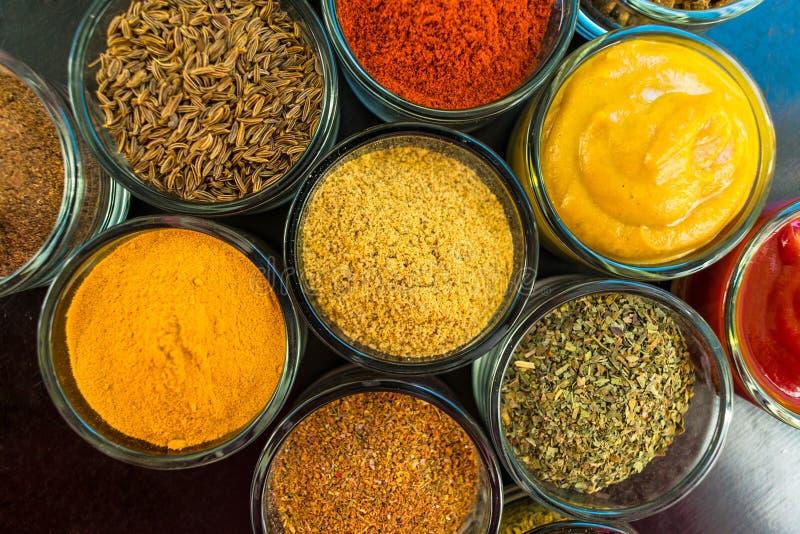 Upps?ttning av kryddor och ?rtar Indisk kokkonst pepprar, saltar, paprika, curry, basilika, senap, muskotnöt, gurkmeja V royaltyfri fotografi