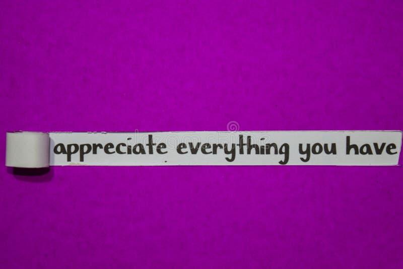 Uppskatta allt som du har, inspiration, motivationen och affärsidéen på purpurfärgat sönderrivet papper arkivfoto