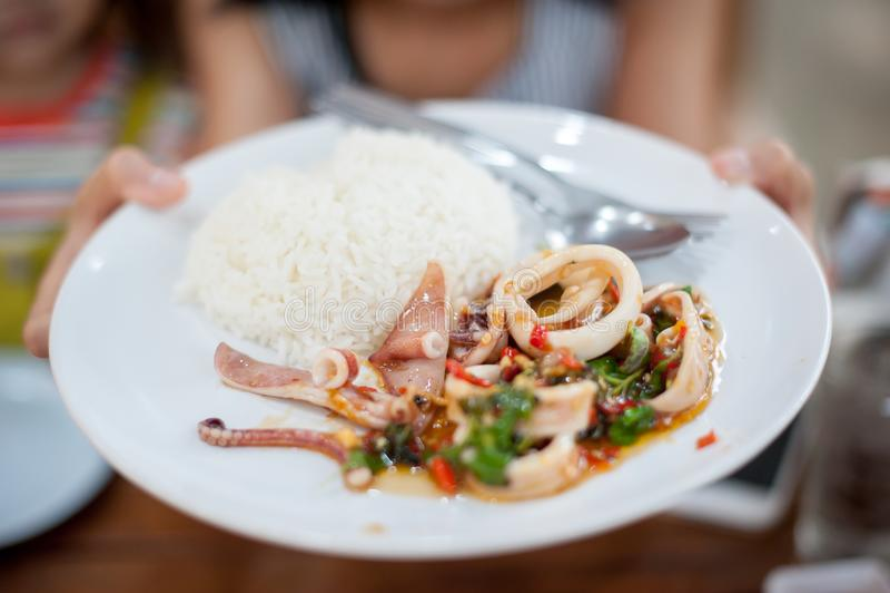 Uppståndelse Fried Squid med ris royaltyfri fotografi