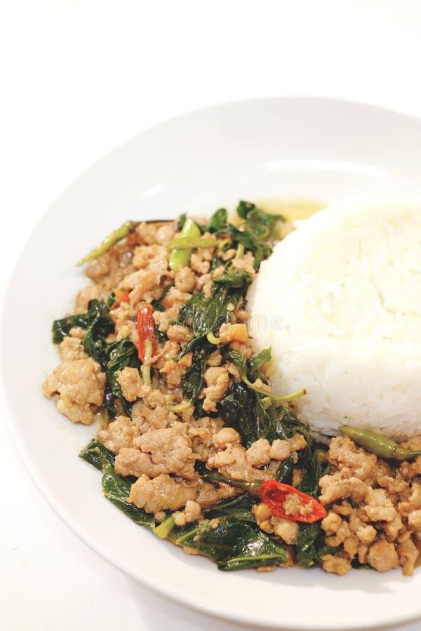 Uppståndelse stekt grisköttbasilika med nya ris royaltyfria foton