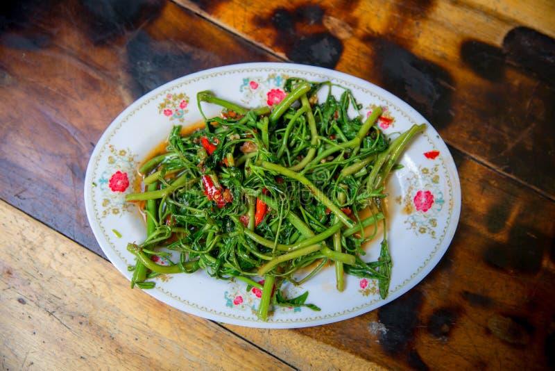 Uppståndelse stekt vattenmimosa med Chillis Kinesisk mat i thailändsk stil fotografering för bildbyråer