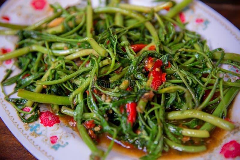 Uppståndelse stekt vattenmimosa med Chillis Kinesisk mat i thailändsk stil royaltyfria bilder