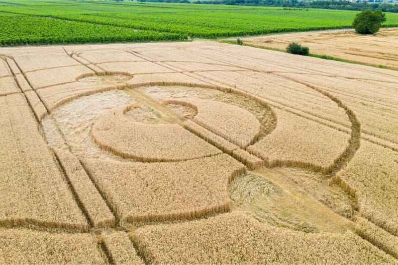 uprawa okręgi śródpolny Alsace Francja zdjęcie royalty free