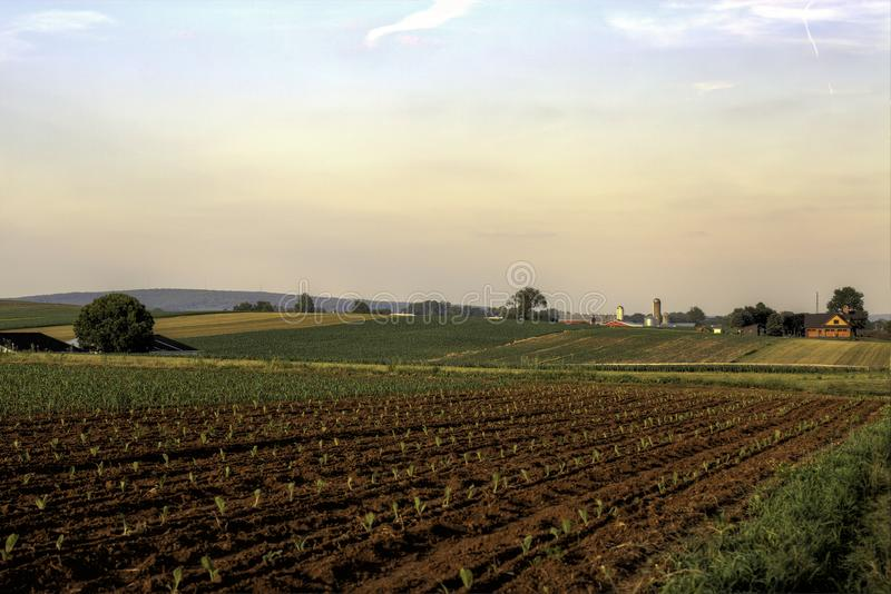 Uprawa w mnie zaczyna scenę przy kraju gospodarstwem rolnym zdjęcia stock