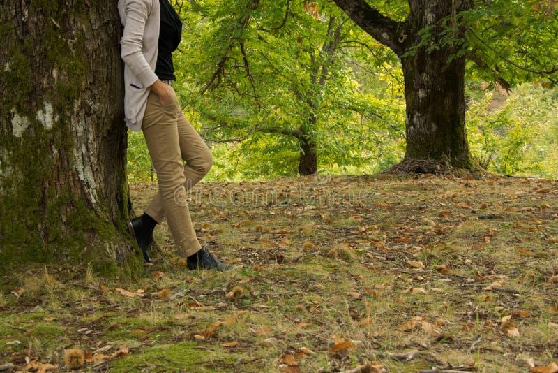 Uprawa widok młoda dorosła kobieta z jesień przypadkowym strojem w parku zdjęcia royalty free