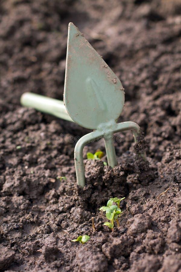 Uprawiać ogródek. Motyka i flanca obraz royalty free