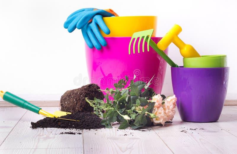 Uprawiać ogródek narzędzia i rośliny na podłoga obraz stock