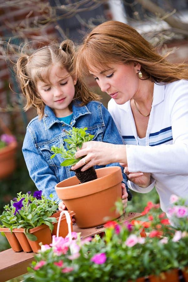 Uprawiać ogródek: Uczący się Dlaczego Puszkować kwiaty obrazy stock