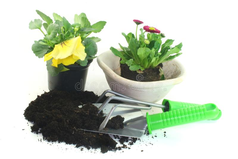 Uprawiać ogródek z wiosna kwiatami zdjęcia stock