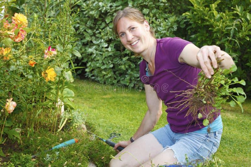 Download Uprawiać ogródek obraz stock. Obraz złożonej z trawy - 42525933