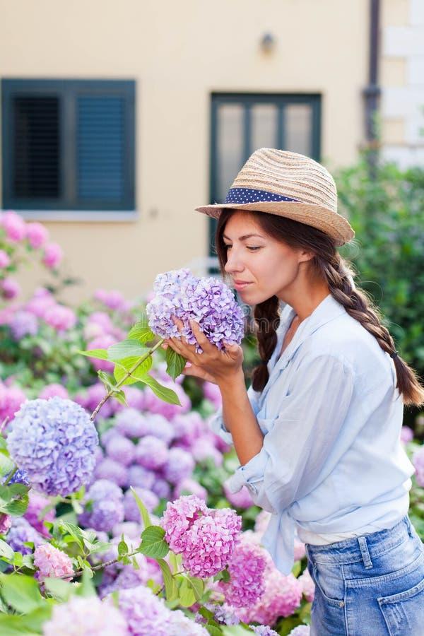 Uprawia? ogr?dek w krzakach hortensja Młoda kobieta pracuje w wieś ogródzie Kwiaty są purpurowi, menchia fotografia stock
