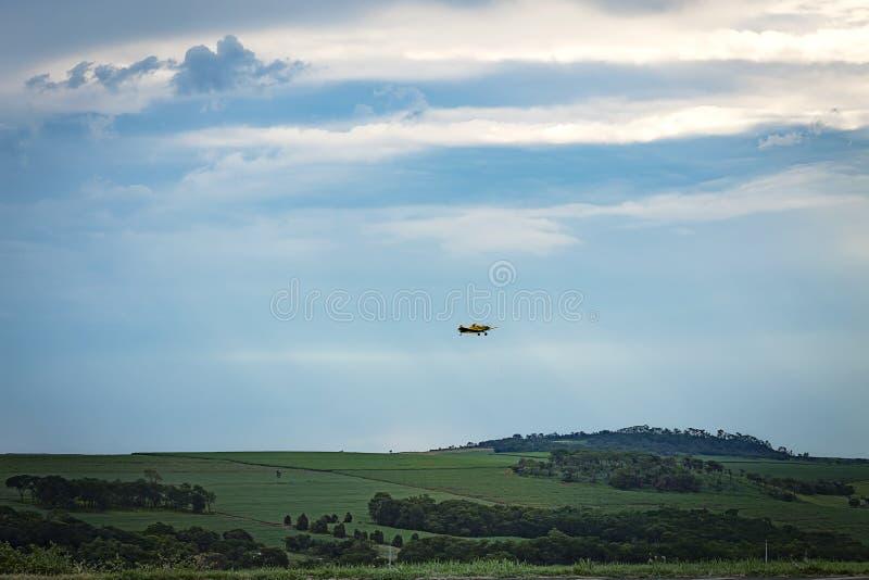 Uprawy duster latanie na trzciny cukrowej polu obraz stock