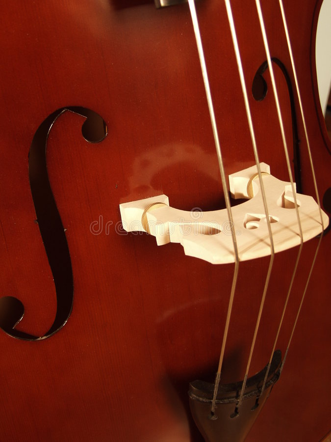 Download Upright Bass stock image. Image of musical, musician, bands - 128555