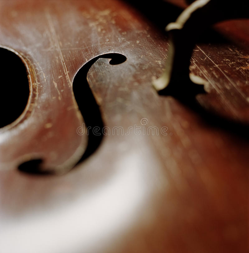 Download Upright Bass stock photo. Image of image, lines, upright - 33040918