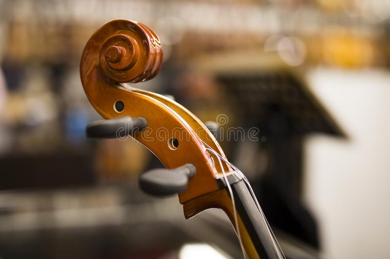 Upright bass. Closeup detail view at the upright bass royalty free stock photography