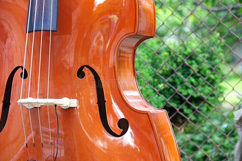 Upright bass outside by fence royalty free stock photography