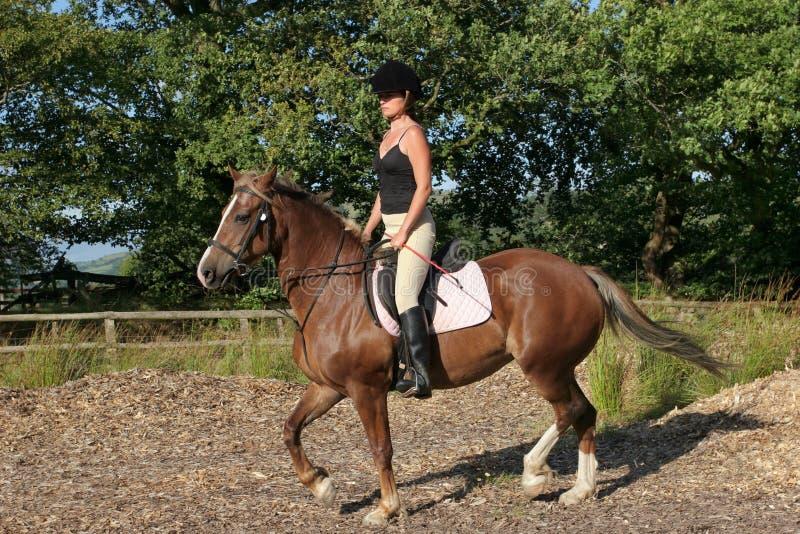 Upright Riding Posture stock photos