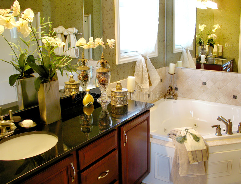 Download Upscale Master Bathroom stock image. Image of flowers - 3304345