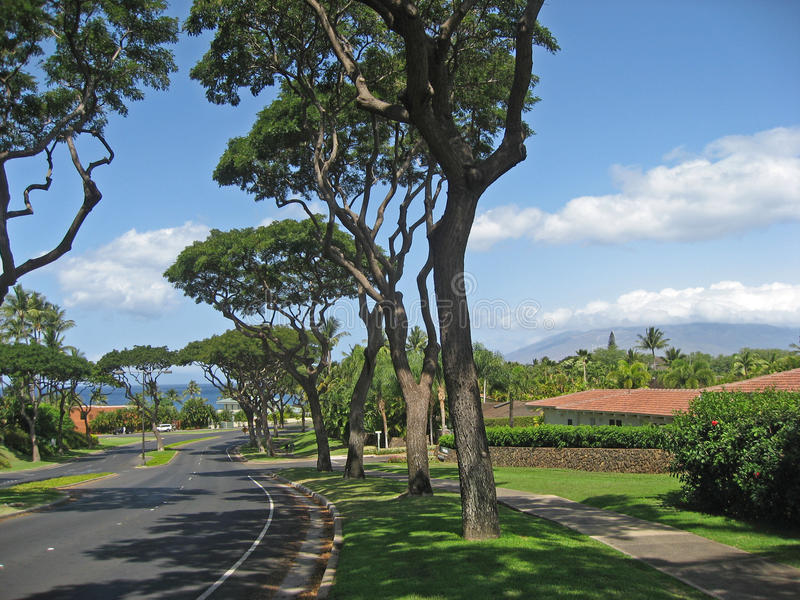 Upscale Maui residential neighborhood royalty free stock images