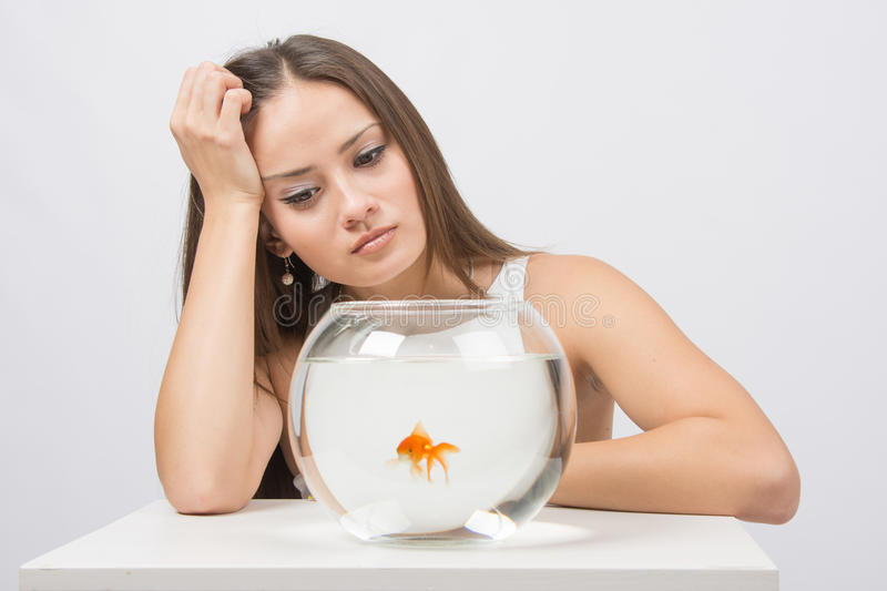 Upset young girl looking at goldfish in a fishbowl. A young girl sits next to a round aquarium in which swimming goldfish stock photography
