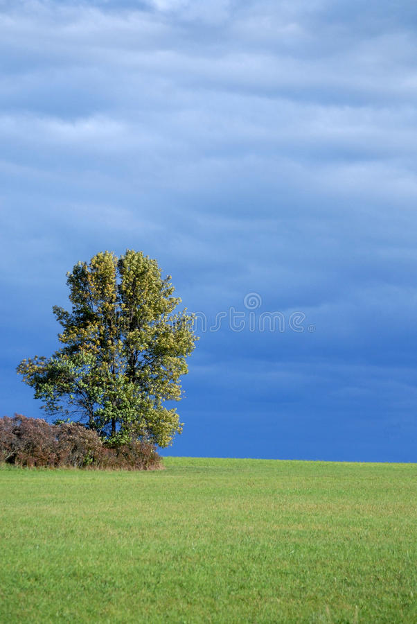 Upstate New York farm land with tree with a blue clouded sky in autumn royalty free stock image