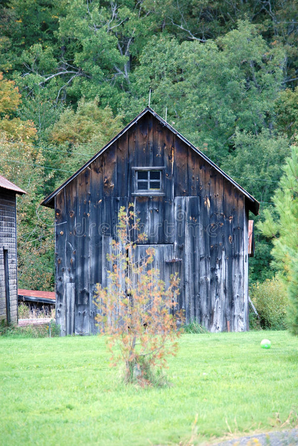 Upstate New York old farm building with background of tall trees, stock photos