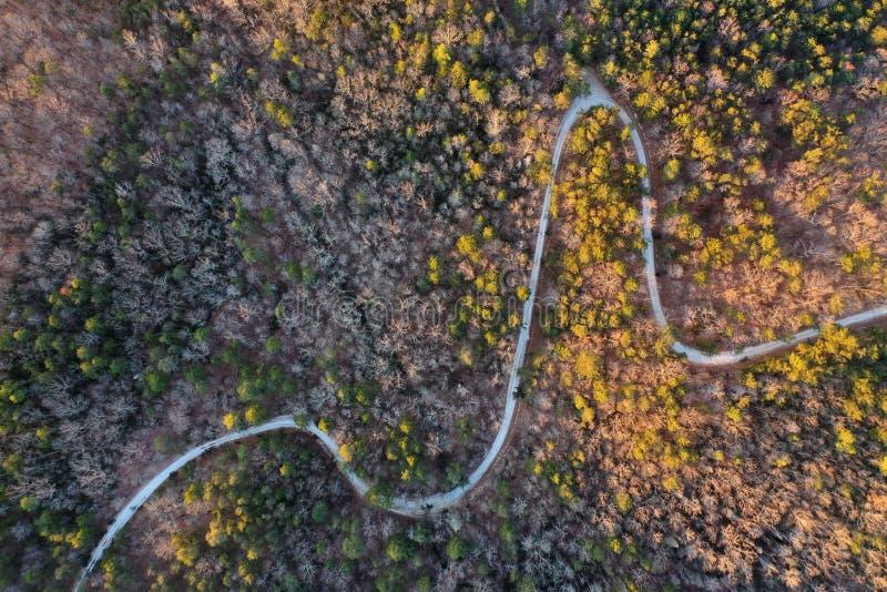 Upstate Południowa Karolina pogórza przy świtem fotografia royalty free