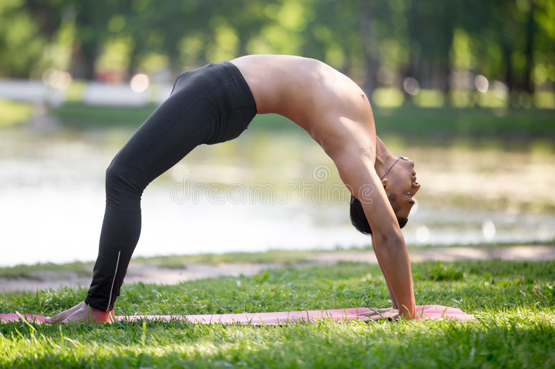 Upward Bow Pose. Profile of attractive sporty Indian young man working out on riverbank in park, doing Bridge exercise, backbend, Chakrasana, Urdva Dhanurasana stock image