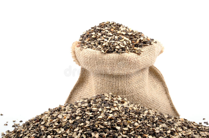 Download Urad dal stock photo. Image of pearl, asian, india, healthy - 11025014